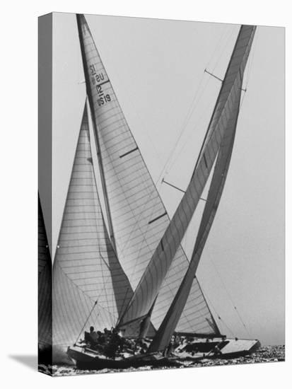 Trial Race For the America's Cup-George Silk-Stretched Canvas Print