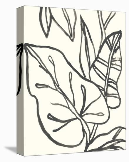 Tropical Contour IV-June Erica Vess-Stretched Canvas Print