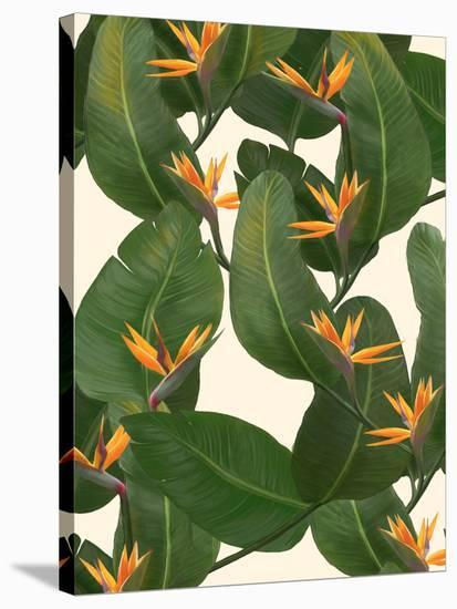 Tropical Floral-Laura Graves-Stretched Canvas Print
