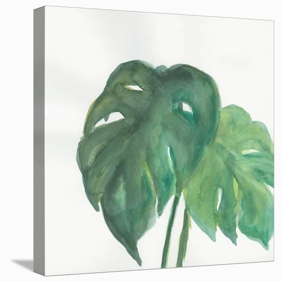 Tropical Palm II-Chris Paschke-Stretched Canvas Print