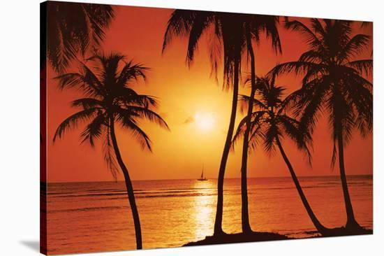 Tropical Sunset--Stretched Canvas Print