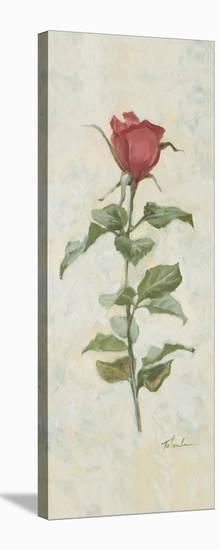 True Love-Telander-Stretched Canvas