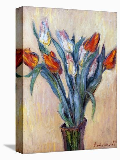 Tulips, 1885-Claude Monet-Stretched Canvas Print