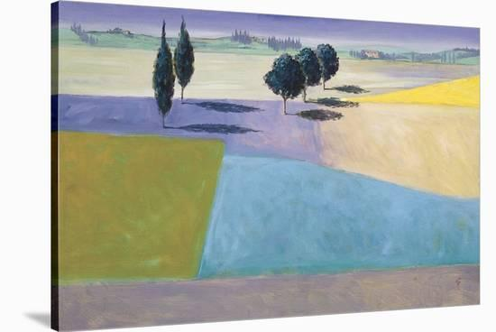 Tuscan Dreams-Don Almquist-Stretched Canvas