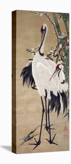 Two Cranes-Jakuchu Ito-Stretched Canvas Print