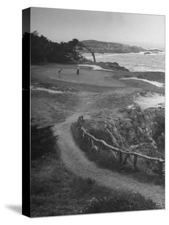 Two Golfers Playing On A Putting Green At Pebble Beach Golf Course Photographic Print Nina Leen Art Com
