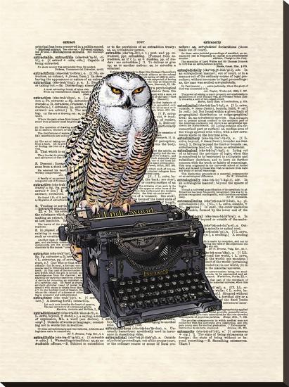 Typewriter Owl-Matt Dinniman-Stretched Canvas Print