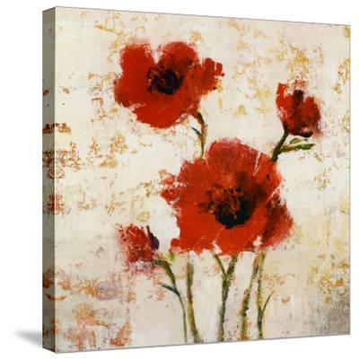 Simply Floral I-Tim O'toole-Stretched Canvas Print