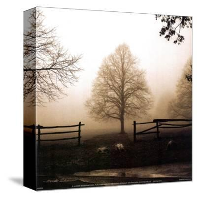 Morning Texture-Harold Silverman-Stretched Canvas Print