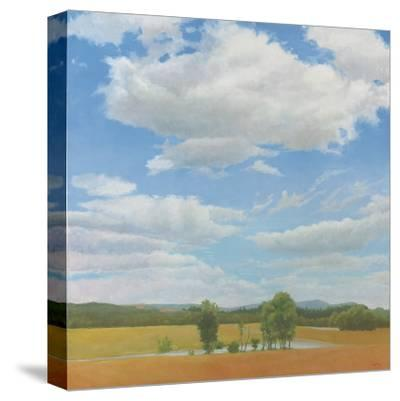 Cooper Sunset Birches-Elissa Gore-Stretched Canvas Print