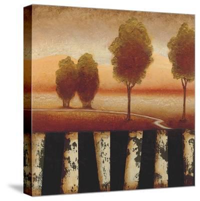 Forest Light II-Susan Osborne-Stretched Canvas Print