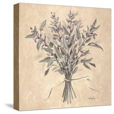 Scent of Sage-Todd Telander-Stretched Canvas Print