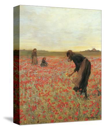 Girls in Poppy Field-Lawren Morris-Stretched Canvas Print