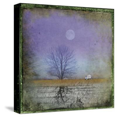 Moonlight in Vermont-Dawne Polis-Stretched Canvas Print
