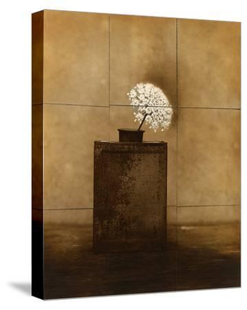 Dark Vessel-Jan Gauthier-Stretched Canvas Print
