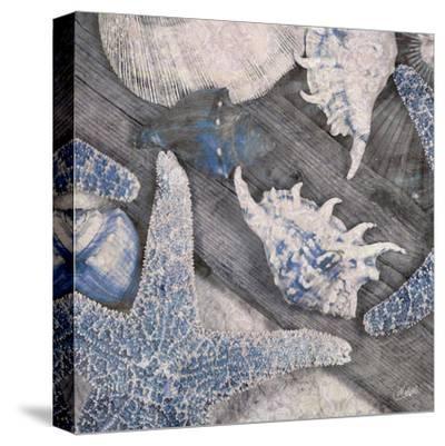 Seashore I--Stretched Canvas Print