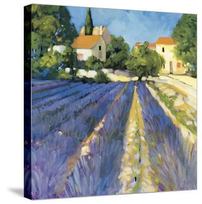 Lavender Fields-Philip Craig-Stretched Canvas Print