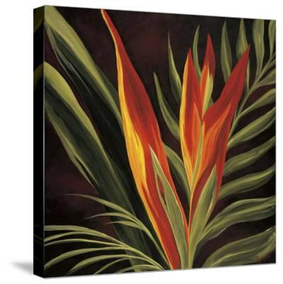 Birds of Paradise II-Yvette St^ Amant-Stretched Canvas Print