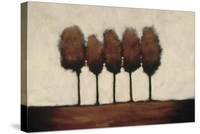 Five Trees-Rita Vindedzis-Stretched Canvas Print
