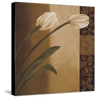 Tulip Pair-Emmanuel Cometa-Stretched Canvas Print