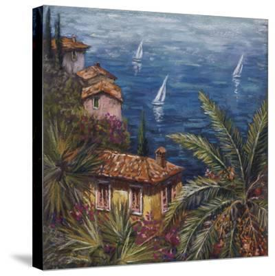 View Through Palms-Malcolm Surridge-Stretched Canvas Print