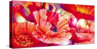Poppy Homage-Nick Vivian-Stretched Canvas Print
