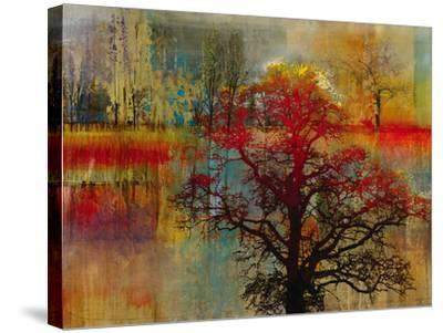 Sunset Pasture-Douglas-Stretched Canvas Print