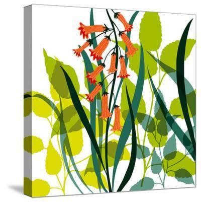 Flower Applique II-Laure Girardin-Vissian-Stretched Canvas Print