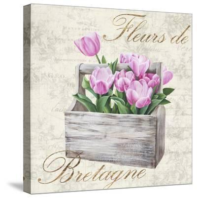 Fleurs de Bretagne-Remy Dellal-Stretched Canvas Print