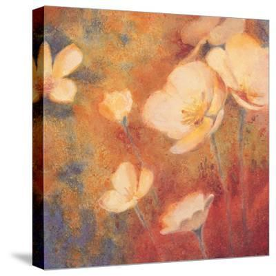 Field of Color I-Anne Michaels-Stretched Canvas Print