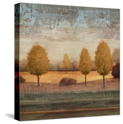 In Awe I-Gregory Williams-Stretched Canvas Print