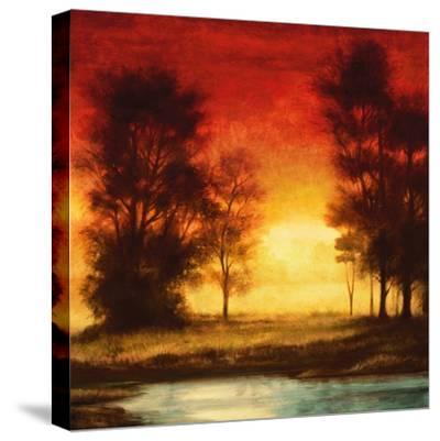 Evening Light II-Neil Thomas-Stretched Canvas Print