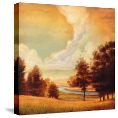 Majestic Morning II-Ryan Franklin-Stretched Canvas Print