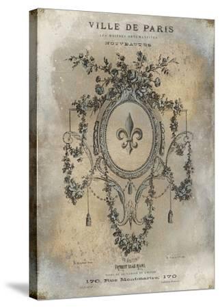 Ville De Paris-Oliver Jeffries-Stretched Canvas Print