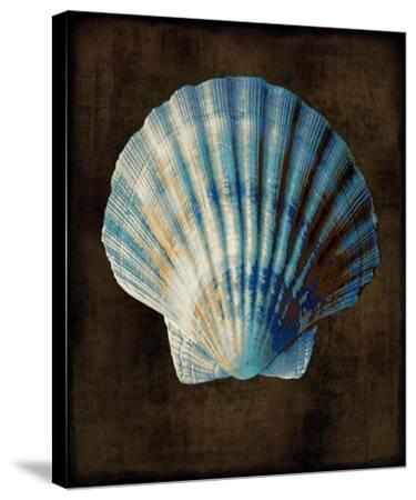 Ocean Treasure II-Caroline Kelly-Stretched Canvas Print