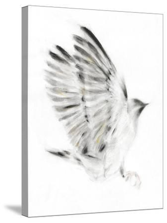 Alight-Kellas Campbell-Stretched Canvas Print