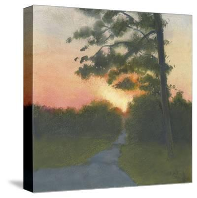 Sand Hill Sunset II-Elissa Gore-Stretched Canvas Print