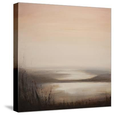 Viewpoint-Tessa Houghton-Stretched Canvas Print