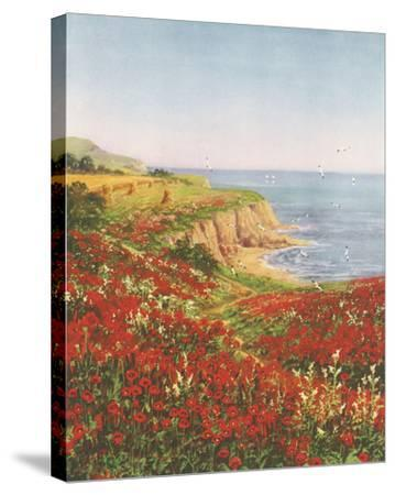 Poppyland-John Halford Ross-Stretched Canvas Print