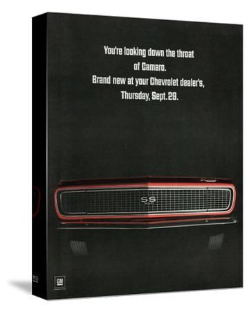 1967 Chevrolet Camaro: Throat--Stretched Canvas Print