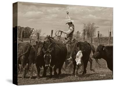 Mancos Roping-Barry Hart-Stretched Canvas Print