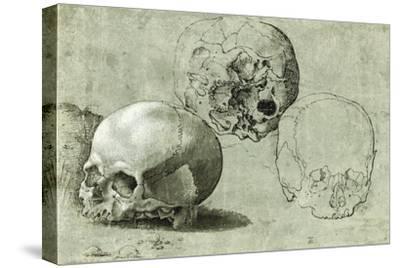 Study of Three Skulls--Stretched Canvas Print