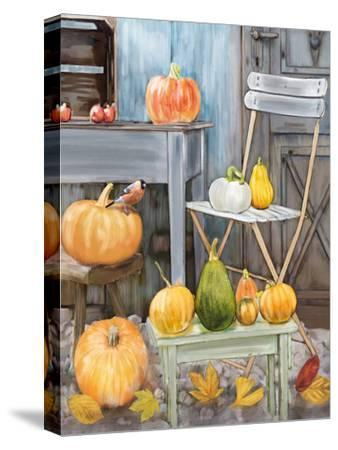 Fall Harvest-Advocate Art-Stretched Canvas Print
