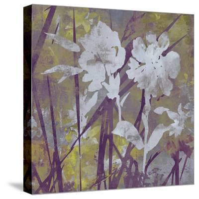 Floral Dusk II-Paul Duncan-Stretched Canvas Print