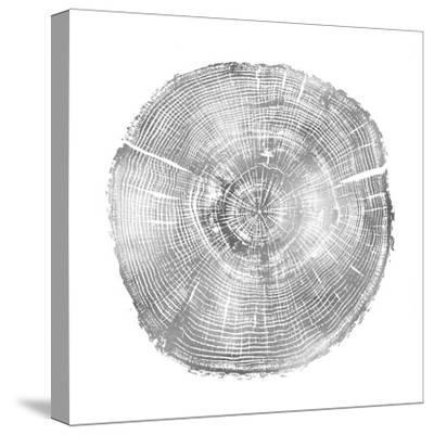 Timber Silver IV-Danielle Carson-Stretched Canvas Print