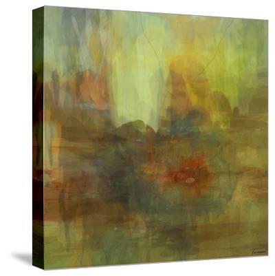 Patterns II-Michael Tienhaara-Stretched Canvas Print