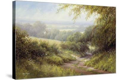 Country Path-Hilary Scoffield-Stretched Canvas Print