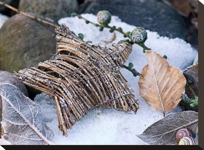 Christmas Nature-Lebens Art-Stretched Canvas Print