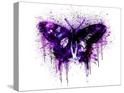 Butterfly 4-Lebens Art-Stretched Canvas Print