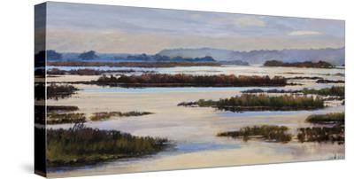 Quiet Marshes-Tania Bello-Stretched Canvas Print